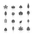 Plant Leaves Black Icons Set vector image vector image