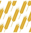 Seamless pattern of ears with ripe grains vector image vector image