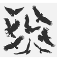 silhouette flying eagle on white background vector image vector image
