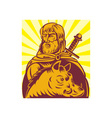 Frey Norse god of agriculture with sword and boar vector image