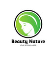 beauty leaf nature logo designs vector image