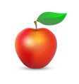 Fresh red apple vector image vector image