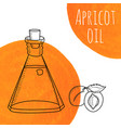 hand drawn apricot oil bottle with orange vector image