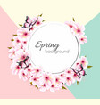spring nature background with a pink sakura vector image vector image