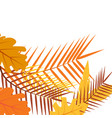 tropical autumn leaves floral exotic jungle vector image vector image