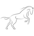 black line horse on white background running vector image vector image