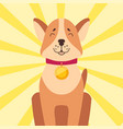high-minded akita-inu with golden medal on neck vector image