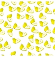 pear lime and slice vector image vector image