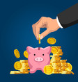 piggy bank savings wealth and investment vector image vector image