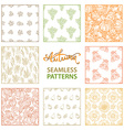 set of seamless linear autumn patterns vector image