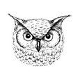 sketch of owl head ballpoint pen vector image