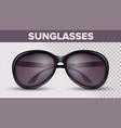 black circle sunglasses trendy 3d shades vector image vector image