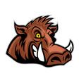 wild hog head vector image vector image