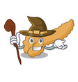 witch pancreas mascot cartoon style vector image vector image