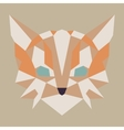 Beige and orange low poly cat vector image vector image
