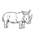 outline rhinoceros icon vector image