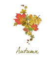 postcard with colorful autumn leaves the leaves vector image vector image