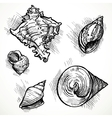 Set of sketches different shapes shell 1 vector image