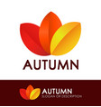 style logo with autumn leaves vector image vector image