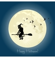Witch flying on broom stick in Halloween night
