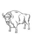 aurochs or bison vector image vector image
