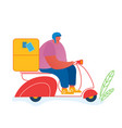 post express delivery service concept male vector image