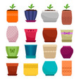 flowerpot and ethnic simple vase collection vector image