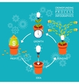 Crowdfunding process infographics vector image