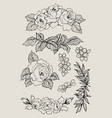 blooming flower set collection hand drawn vector image vector image