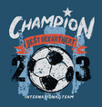 champion soccer department vector image vector image