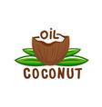 coconut oil logo2 vector image vector image