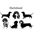 dachshund set collection pedigree dogs black vector image