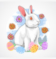 easter rabbit spring vector image