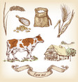 farm set cow and farm house vector image vector image