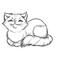fluffy cat comfortably sleeps vector image vector image