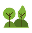 forest trees hill icon image vector image