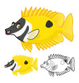 Rabbit Fish vector image vector image