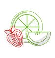 silhouette orange strawberry and apple slice vector image vector image