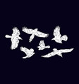 stock set soaring birds silhouettes vector image