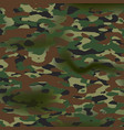 summer camouflage background pattern army vector image vector image
