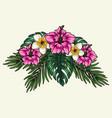 tropical floral bouquet colorful concept vector image