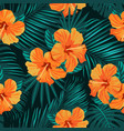 tropical flowers and palm leaves on background vector image