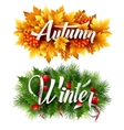 Auyumn and Winter Typographic Banner vector image