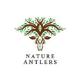 deer tree leaves forest logo icon vector image vector image