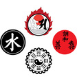 the asian religious and magic symbols vector image