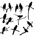 Bird silhouettes vector | Price: 1 Credit (USD $1)