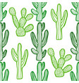 cactus pattern in graphic hand drawn style vector image