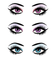 Fantasy eyes makeup vector image