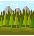 flat landscape of forest of conifers and mountains vector image