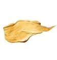 Gold Bronze Metal Foil Glitter Brush Stroke vector image